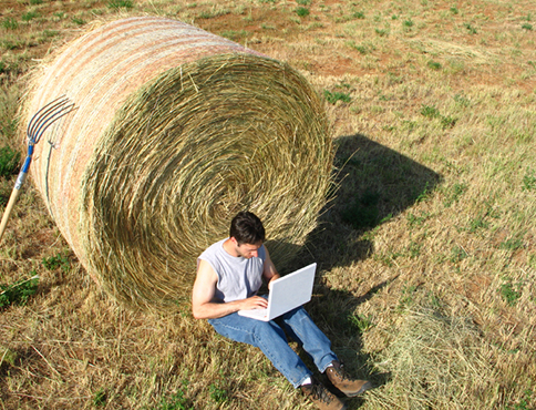 Man leaning on a bale of hay using laptop